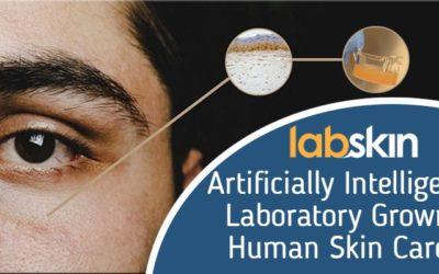 Artificially Intelligent Labskin